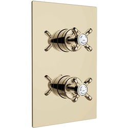 Bristan 1901 Concealed Shower Valve With Dual Controls (2 Outlet, Gold).