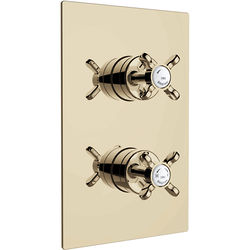 Bristan 1901 Concealed Shower Valve With Dual Controls (1 Outlet, Gold).