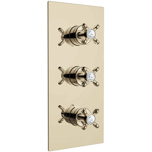 Additional image for Concealed Shower Valve With Dual Controls (2 Outlet, Gold).