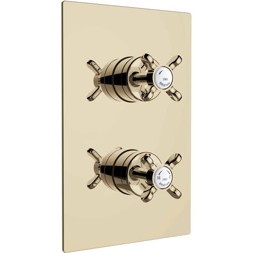 Additional image for Concealed Shower Valve With Dual Controls (1 Outlet, Gold).
