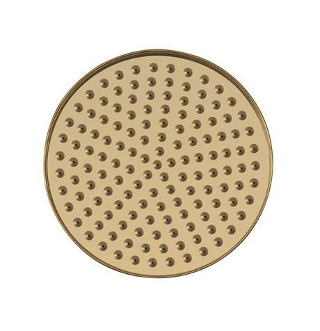 "Additional image for Shower Head 8"" (Unlacquered Brass)."