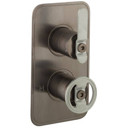 Additional image for Thermostatic Shower Valve (2 Outlets, Black & Nickel).