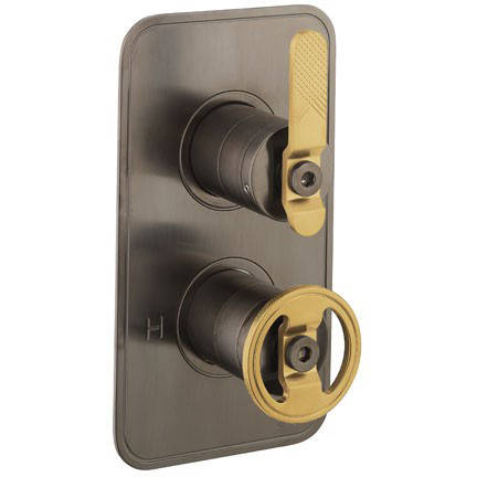 Additional image for Thermostatic Shower Valve (2 Outlets, Black & Brass).