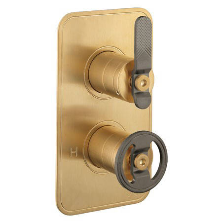 Additional image for Thermostatic Shower Valve (2 Outlets, Brass & Black).