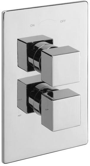 Additional image for Thermostatic Twin Shower Valve Wtih Head & Arm.