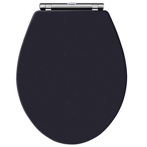 Additional image for Carlton Toilet Seat With Soft Close (Twilight Blue).
